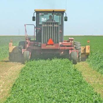 Alfalfa Tractor